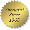 Window Well Experts - Window Bubble, Specialist Since 1965